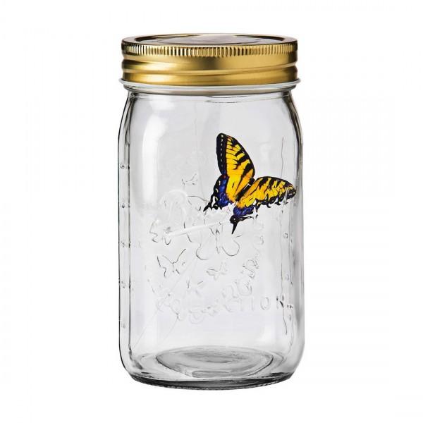 Бабочка в банке Желтый Парусник
