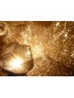 Домашний планетарий Звезда Astrostar